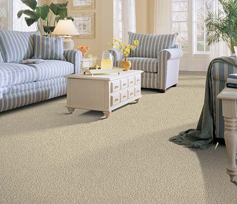Learn About Types of Carpet, Carpeting Styles & Types | Mohawk ...