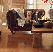 Laminate Wood Flooring Laminate Floors Amp Flooring